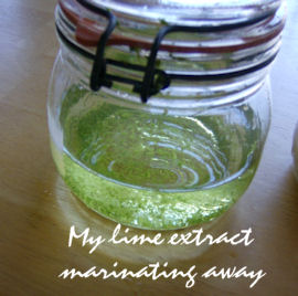 lime-extract2