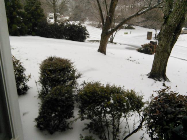 winter-2014