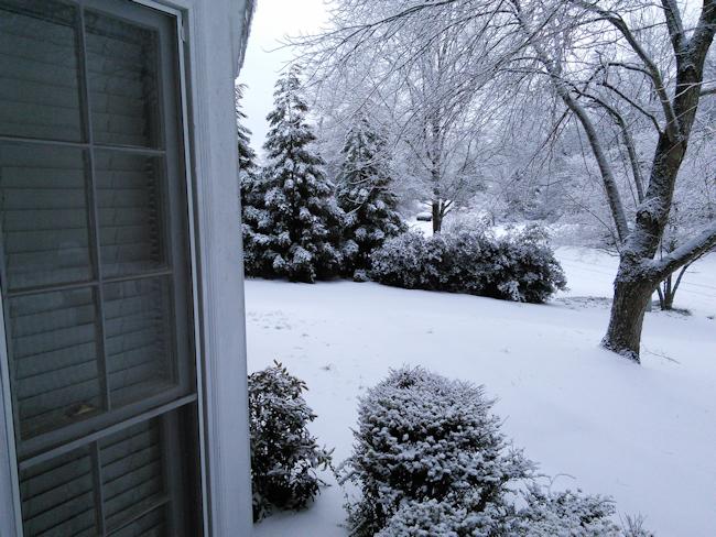 winter-storm-2