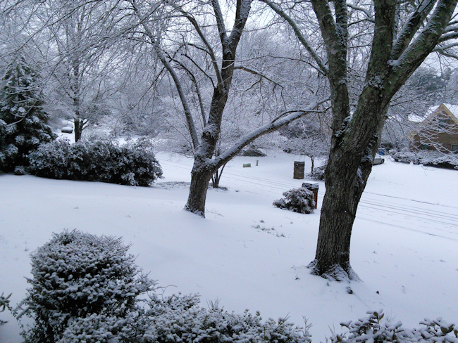 winter-storm-3