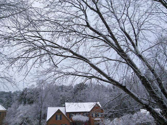 winter-storm-6
