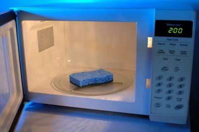 sponge-microwave