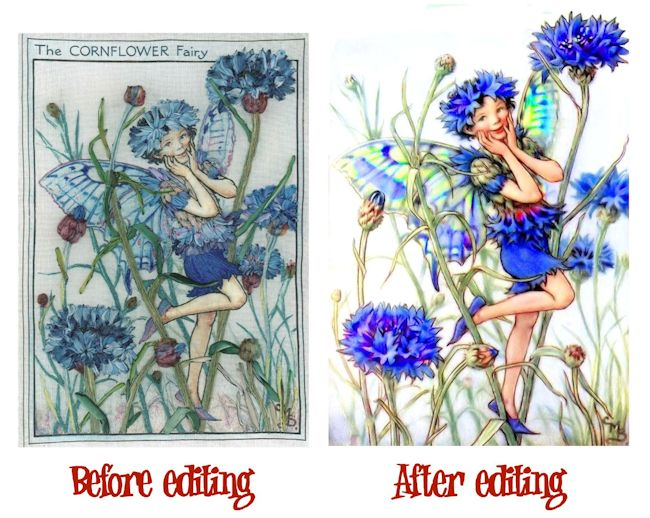 Cornflower Before-After 650