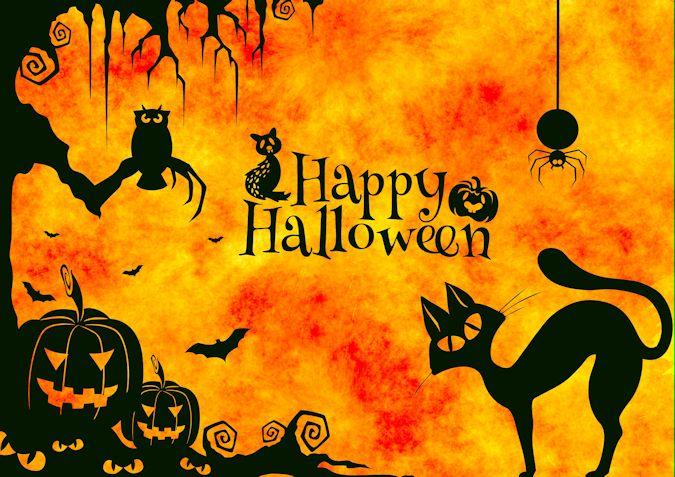 Halloween 376585.jpg 675