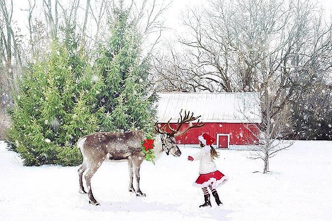 christmas-scene-1846486