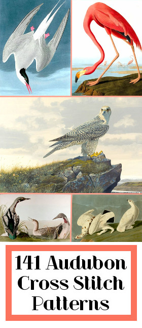 Audubon Cross Stitch Patterns