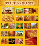 93 Glorious Autumn Images, Original Oil Paintings, on a DVD