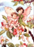 130 Flower Fairies Cross Stitch Patterns on a DVD