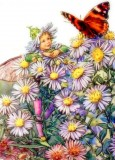 The Michaelmas Daisy Fairy: Flower Fairies Cross Stitch Pattern