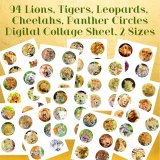 Collage Sheets: 94 Printable Lions, Tigers, Leopards, Cheetahs, 2 Sizes, High Resolution, Original Oil Paintings, DIY Printing