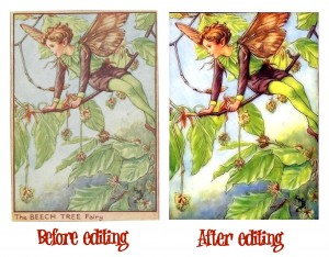 130 Flower Fairies Cross Stitch Patterns: Instant Download
