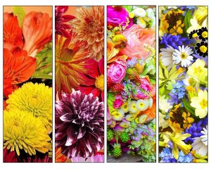 72 DIY Printable Flower Bookmarks: High Resolution Images